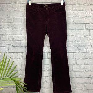 Ann Taylor LOFT Modern Sexy Boot Velvet Jeans 31